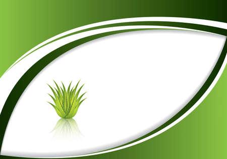 Aloe-Vera-Konzeption Illustration