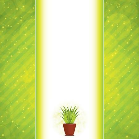 Aloe Vera concept design Stock Vector - 14445921