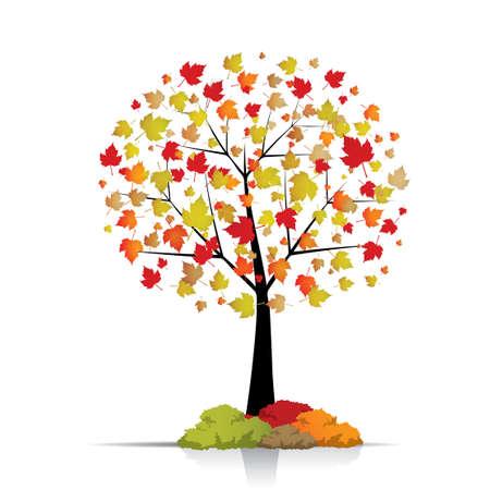 rowan tree: Beautiful autumn tree isolated on white Illustration