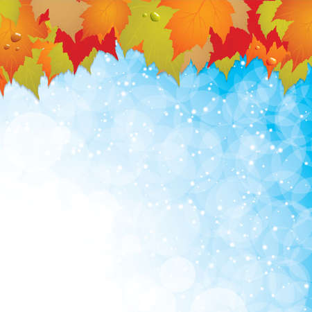 Autumn leaves background Vector Vector