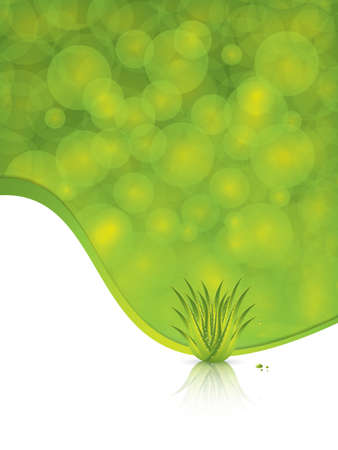 aloe vera plant: Aloe Vera concept design