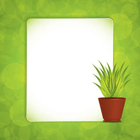 Aloe Vera plant in pot  Vector