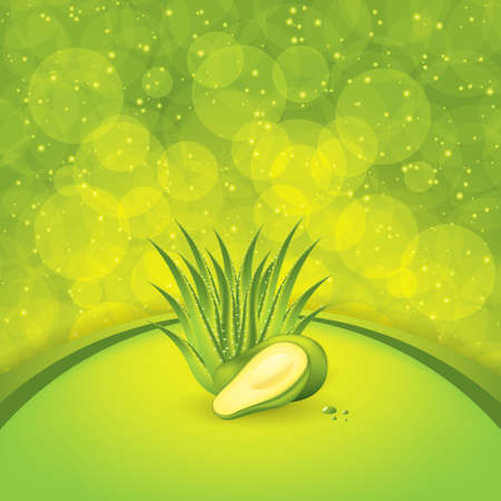 halved: Avocado and Aloe Vera concept design vector