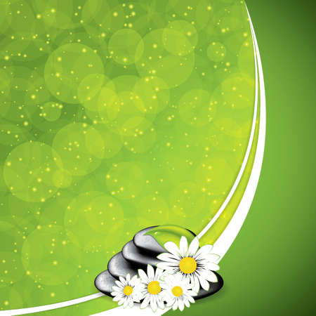Background with spa stones and white flowers Vector Vector