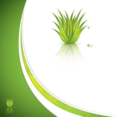 Aloe Vera concept design Stock Vector - 19500727