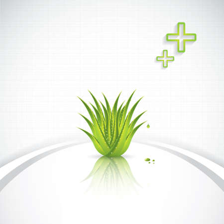 Aloe Vera concept design Stock Vector - 20949795