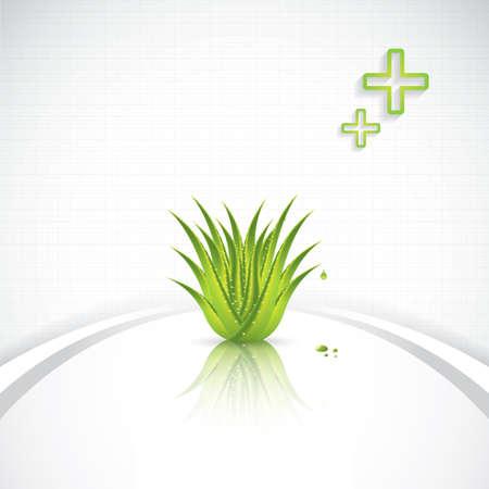 Aloe Vera concept design Stock Vector - 20949795