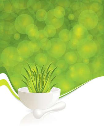 aloe vera plant: Aloe Vera.Alternative medicine Illustration