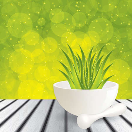 Aloe Vera Alternative medicine  Stock Vector - 22108248