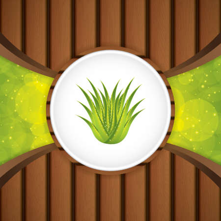 vera: Aloe Vera concept design.Wood vector Illustration