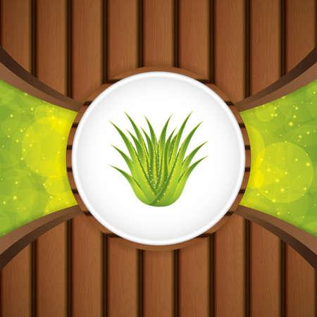 aloe: Aloe Vera concept design.Wood vector Illustration