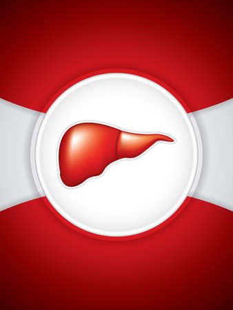 glycoprotein: Liver background.Vector Illustration