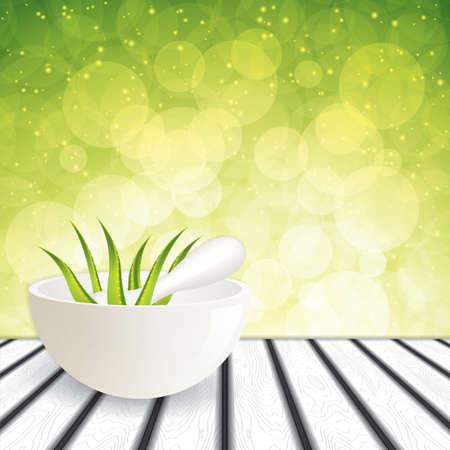 aloe vera plant: Aloe Vera