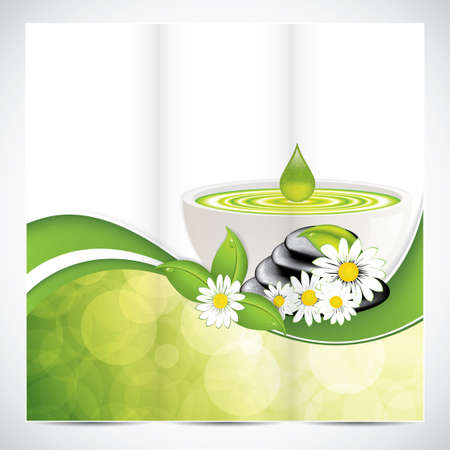 Spa salon beauty tri-fold brochure design with leaves bowl and stones