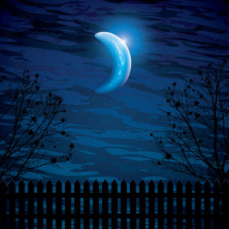 midnight: Vector night background with tree branches and the half moon Illustration