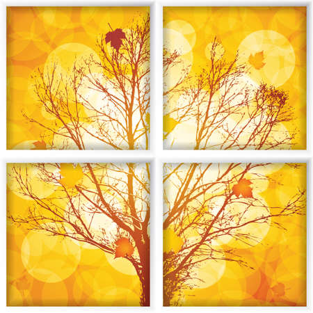 trough: Autumn through a window.Vector
