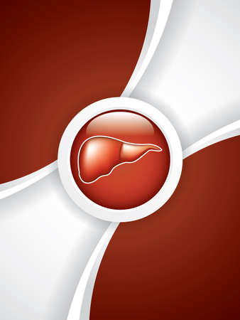 hepatic portal vein: Liver brochure.Vector Illustration