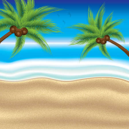 tropical: Tropical beach.