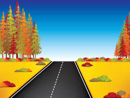 vista: Autumn landscape with road and beautiful colored trees.Vector illustration.