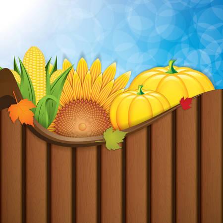 corn flower: Thanksgiving background.