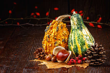 Autumn background with pumpkins, acorns, pine cones, berries, chestnuts and leaves on rustic wooden background (selective focus). Stock Photo