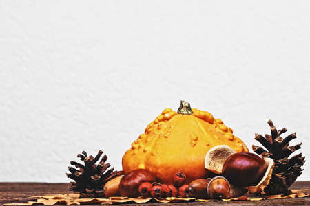 Autumn background with pumpkins, acorns, pine cones, berries, chestnuts and leaves on rustic wooden background (selective focus) in front of white wall. Stock Photo