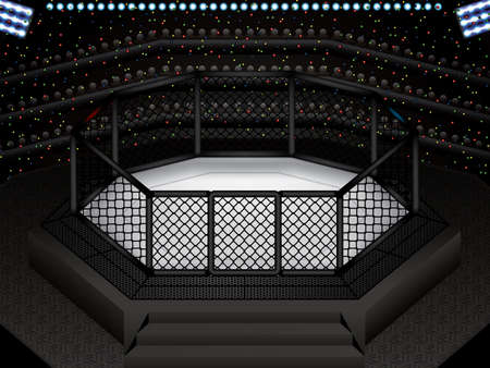 Vector illustration of MMA cage.Mixed martial arts octagon cage