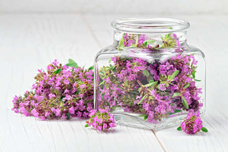 Thymus serpyllum herb in bottle.Thyme is a medicinal herb for dissolving and easier secretion of mucus.Alternative medicine concept on a white wooden table (selective focus). Stock Photo
