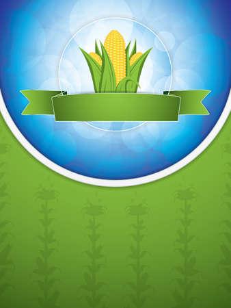 Corn brochure, vector illustration