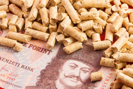 florin: Saving Pellet Hungary Florin Stock Photo