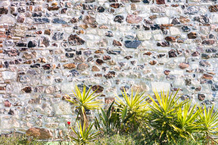 in particular: Stone wall with plants. particular of a stone house.
