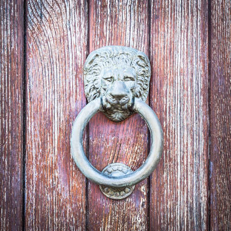 in particular: Lion head on wood. Particular of a knocker Stock Photo