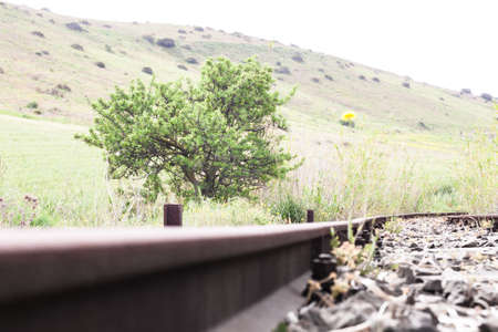 inwardly: inside of a track. Point of view of campaign inside an abandoned rail binary Stock Photo