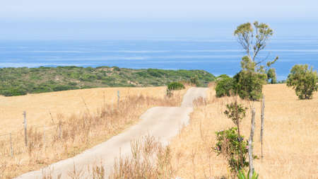 road ahead: undulating country road. concept dangerous and uncertain road ahead