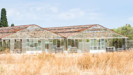 abandonment: greenhouses abandoned agriculture. concept of abandonment of agriculture as a productive sector. Stock Photo