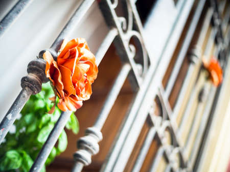 guilt: roses on the bars prison. concept of expiation of guilt