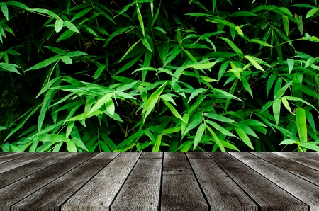 empty modern gray color wooden terrace with image of dark green plant tropical bamboo leaf texture background, copy space for display of product or object presentation, garden decorative concept Stock Photo