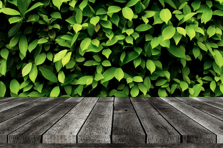 empty wooden board, table or modern wooden terrace with image of green leaf nature background, copy space for display of product presentation, advertisement, commercial and marketing concept