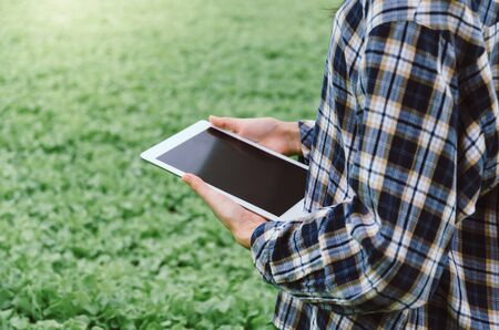 young female farmer using mobile tablet computer with organic hydroponic fresh vegetables produce in greenhouse garden nursery farm, smart farming technology and agricultural innovation concept