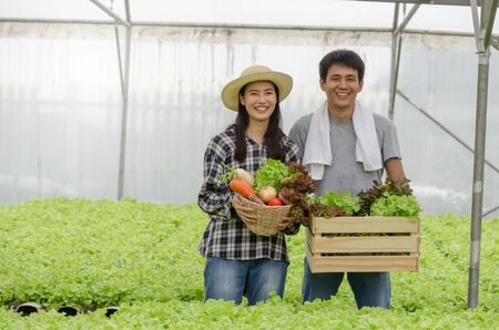 asian young friendly couple farmer smiling and holding organic hydroponic fresh green vegetables produce wooden box together in greenhouse garden nursery farm, business farmer and healthy food concept Standard-Bild