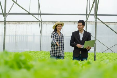 young asian farmer woman and business man talking and checking fresh green oak lettuce salad, organic hydroponic vegetable with laptop in greenhouse garden nursery farm, agriculture business concept 免版税图像