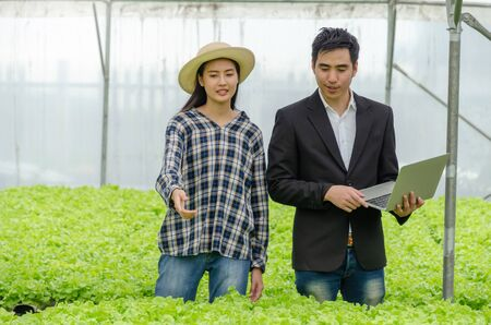 young asian woman farmer and business man talking and checking fresh green oak lettuce salad, organic hydroponic vegetable with laptop in greenhouse garden nursery farm, agriculture business concept