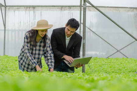 agronomist and young woman asian farmer discussion and checking fresh green oak lettuce salad, organic hydroponic vegetable with laptop in greenhouse garden nursery farm, agriculture business concept 版權商用圖片