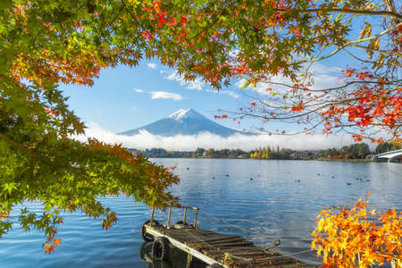 beautiful view of Fuji san mountain with colorful red maple leaves and winter morning fog in autumn season at lake Kawaguchiko, lanscape and travel concept
