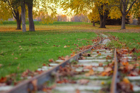 Miniature train track, covered by grass and leaves, in the Riverside Park in Guelph, ON, during autumn Stock Photo - 16647824
