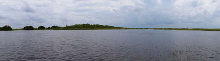 Wetlands in Everglades National Park, Florida