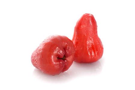 merah: wax apple on white background