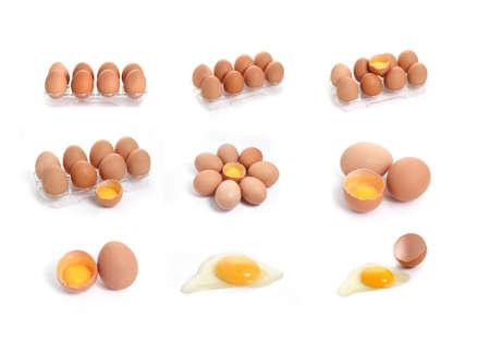 set of raw chicken eggs