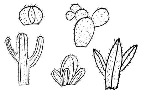 prickly: hand draw sketch of cactus