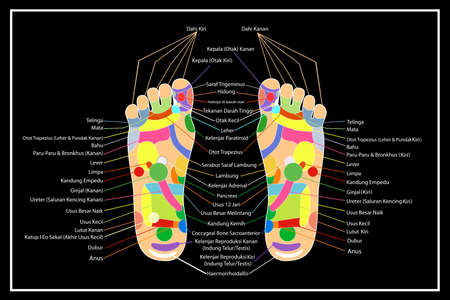 chiropody: Traditional alternative heal, Acupuncture - Foot Scheme (Indonesia Language)